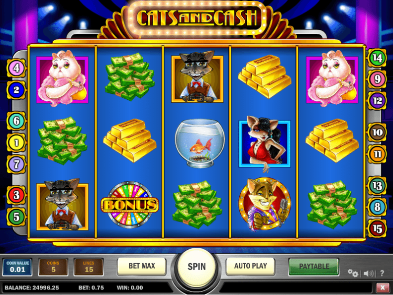 Cats_and_Cash_7